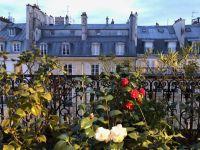 nue propriete 75 paris bouquet 834000 photo 0